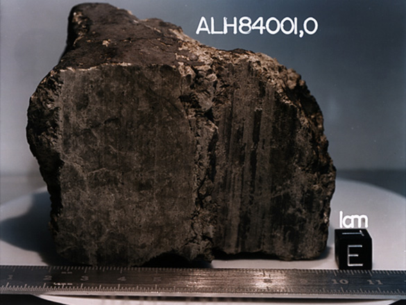 The ALH84001 meteorite, which in a 1996 Science publication was speculated to be host to what could be ancient Martian fossils. That finding is still under dispute today. (Credit: NASA/JSC/Stanford University)