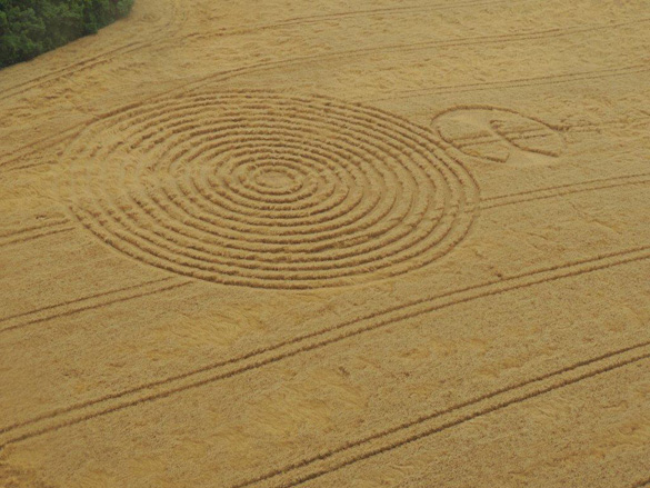 Brazil Crop Circle