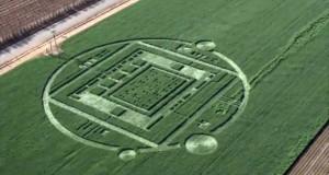 CA-NVIDIA-Crop-Circle