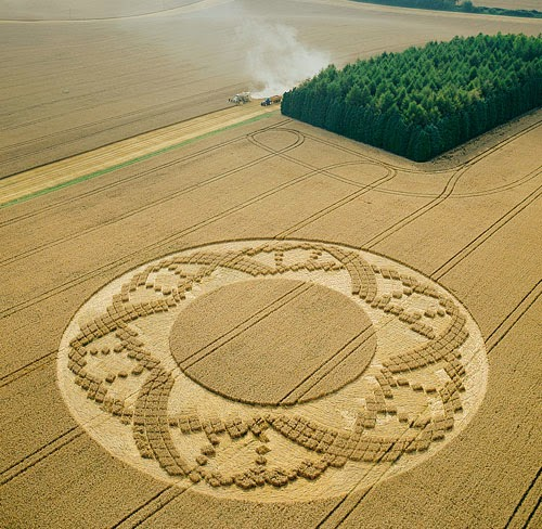 A crop circle formation near Crooled Soley in Berkshire, discovered in August 2002. (Copyright: Steve Alexander/temporarytemples.co.uk)