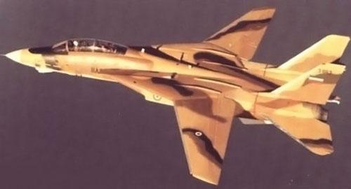 F_14a