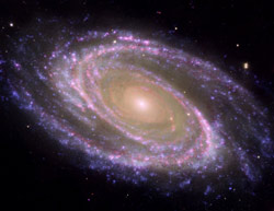 Galaxy M81 (image credit: NASA)