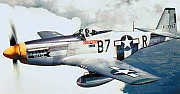 The F-51 was better known as the P-51 Mustang, made famous during WWII.