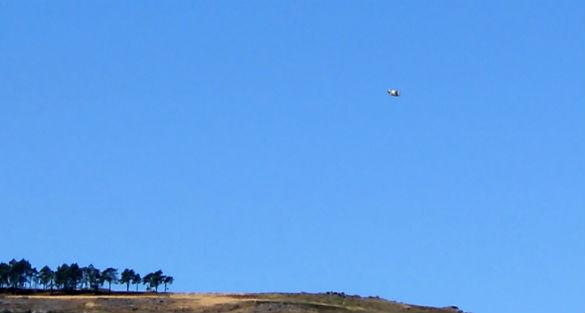 PT UFO Pic 2 cu ftr
