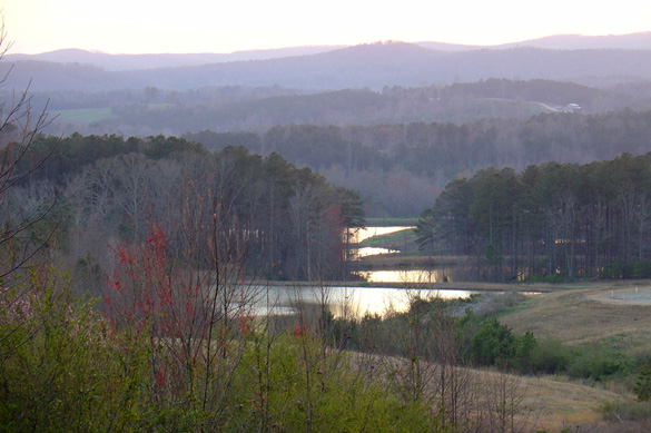Alabama countryside near Ranburne. (Credit: Tim McWhorter)