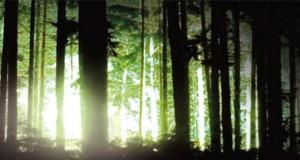 Rendlesham-Forest-UFO-ftr