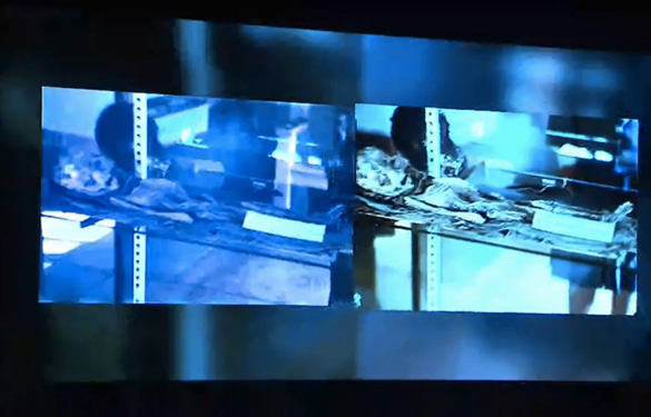 Screenshot from the conference in Mexico showing both slides side by side. (Credit: Slide Box Media/Jaime Maussan)