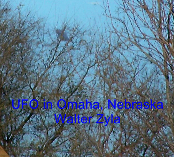 Close-up of the second image with the object behind the trees. (Credit: MUFON/Walter Zyla)