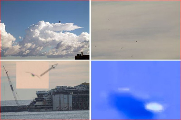 UFO and birds comparison. The UFO videod in Rome is on the bottom right. (Credit: C.UFO.M)