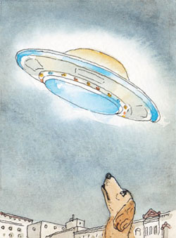 Dog looking at UFO. (Credit: Bill Moyers/Mother Jones http://www.motherjones.com/politics/2012/07/voter-id-laws-charts-maps)