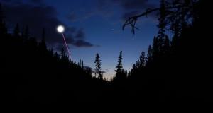 forest flee UFO-ftr