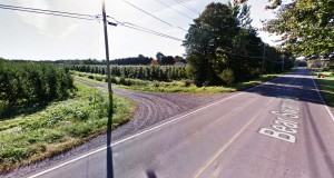Family members at Williamson, New York, were shocked when they saw a UFO in nearby trees on September 27, 2014. Pictured: Williamson, New York. (Credit: Google)