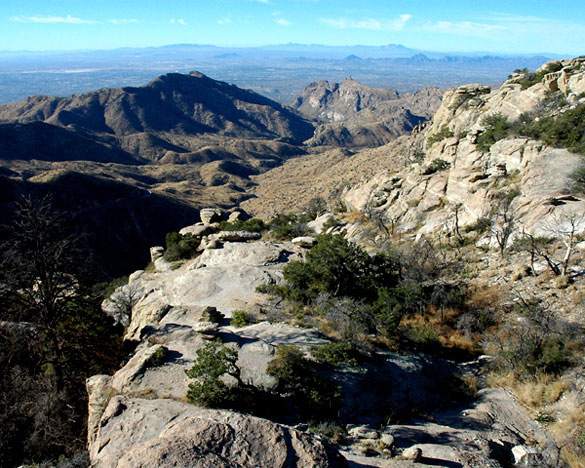 The objects appeared to be a dull gray, but shifted to a copper color. Pictured: A view of Tucson from Windy Point, at elevation 6,580 feet along the road up Mt. Lemmon. (Credit: Wikimedia Commons)