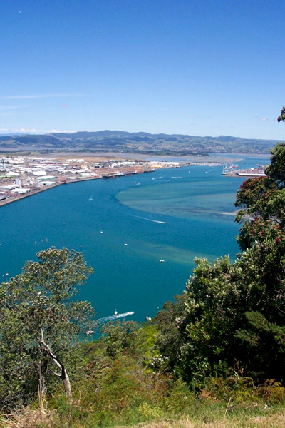 View over Greater Tauranga, taken from the top of Mauao. (Wikimedia Commons)