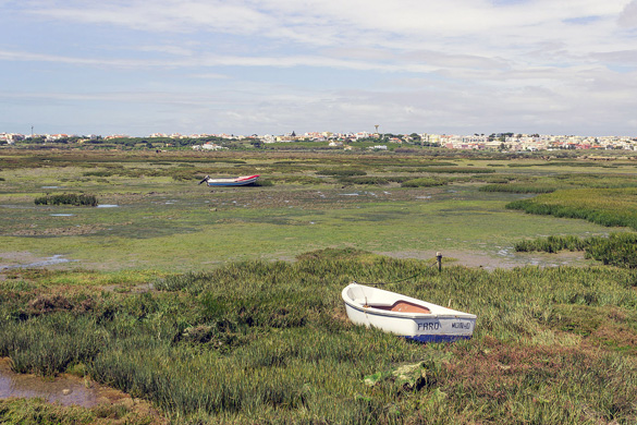 A boat stranded on the coast of Ria Formosa in Faro. (Credit: Wikimedia Commons)
