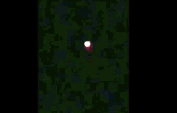 Cropped and enlarged still image from the witness video. (Credit: MUFON)