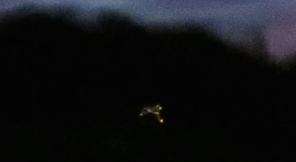 Cropped and enlarged portion of witness image. (Credit: MUFON)