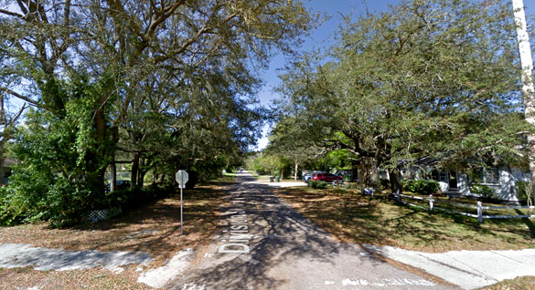 The creature looked directly at the witness. Pictured: Fernandina Beach, FL. (Credit: Google)