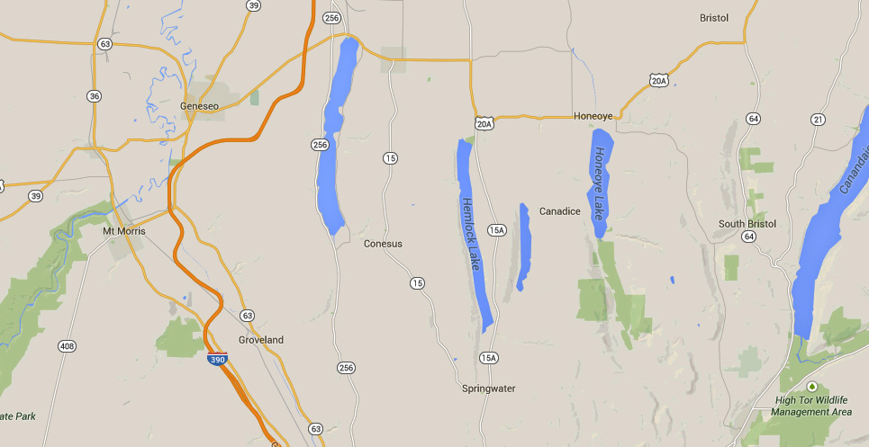 Conesus, NY, is about 40 miles south of Rochester, NY. (Credit: Google)