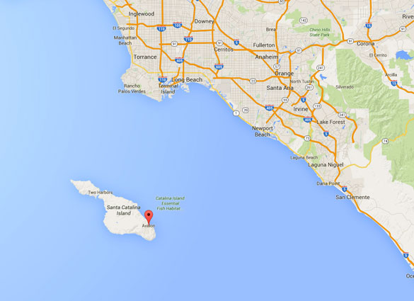 Avalon sits just off the California coast from Newport Beach. (Credit: Google Maps)