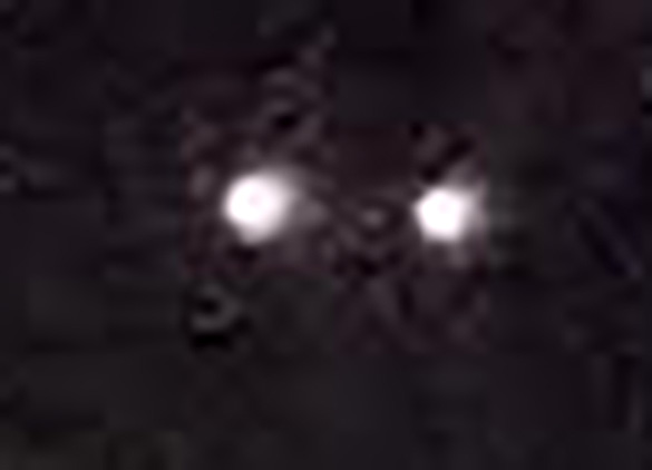 Cropped and enlarged portion of the witness photo. (Credit: MUFON)
