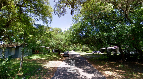 The creature then backtracked, and went back the same it had come. Pictured: Fernandina Beach, FL. (Credit: Google)