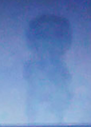 Cropped and enlarged version of witness image. (Credit: MUFON)