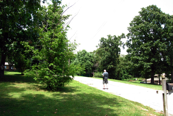Investigators took readings at the original area, pictured, where the sighting occurred. (Credit: MUFON)