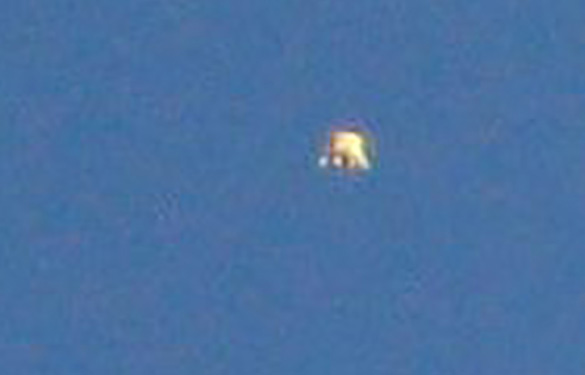 Cropped and enlarged version of Witness Image #5. (Credit: MUFON)