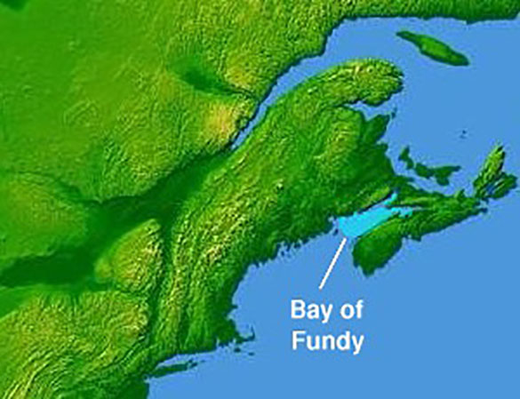 Bay of Fundy (Credit: Google)