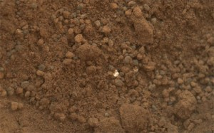 Curiosity discovers shiny particles in Martian soil