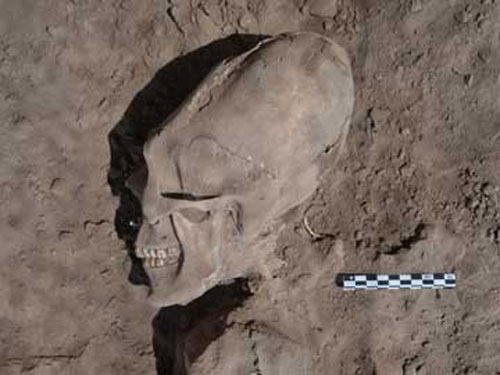 'Alien' skulls found in Mexico