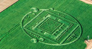 Crop circle near Monterey, CA. (Credit: Julie Belanger / 111th Aerial & Architectural Photography & Video)