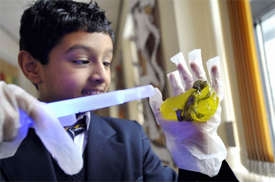 A student investigating a baby alien. (Credit: Telegraph &amp; Argus)