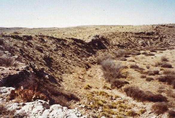 Alleged UFO crash site (photo copyright Kevin Randle)