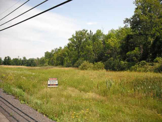 Country road in Altamont. (image credit: Harmon Homes)