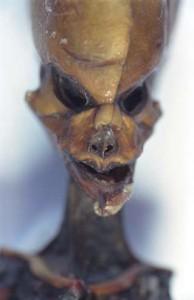 The Atacama humanoid's face. (Credit: IIEE)