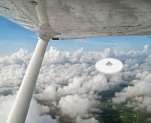 Artist rendering of object seen by the Cessna pilot.