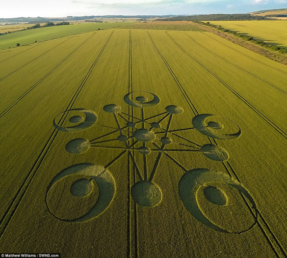 An image of the crop circle found near Blandford Forum in the county of Dorset in South West England. (Credit: Mathew Williams/SWNS.com)