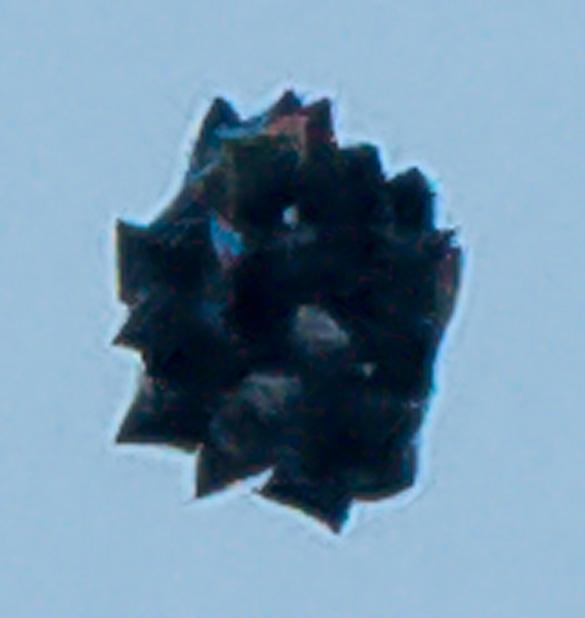 Ellensburg UFO magnified. (Credit: Debbie Hulbert/Daily Record)