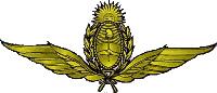 Argentinean Air Force (AAF) Logo