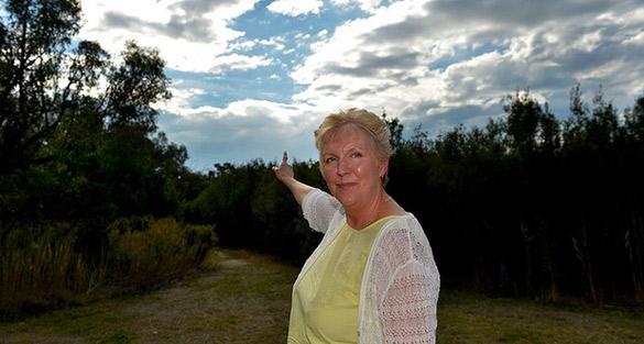 Joy Clarke Westall 66 UFO Witness