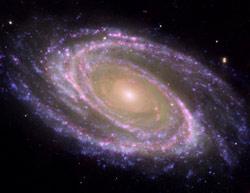 Galaxy M81 (image credit: NASA)