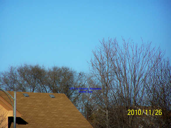 The second photo captured by the witness. The object can be seen behind the trees. (Credit: MUFON/Walter Zyla)