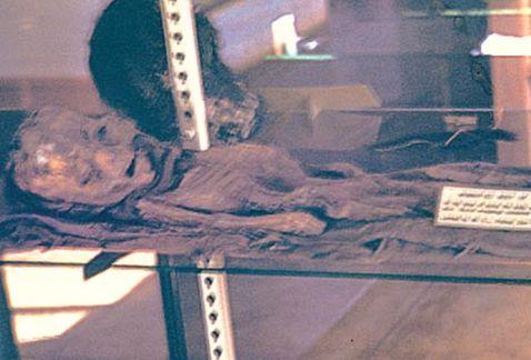 "The allusive second ""Roswell Alien Slide"" image. (Credit: Slide Box Media/Jaime Maussan)"