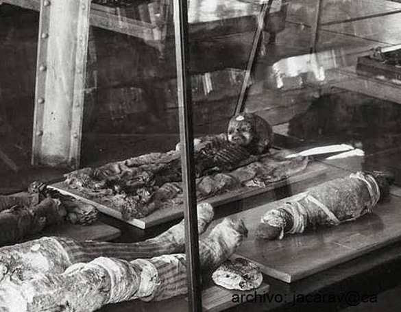 Thebes mummy image acquired by Isaac Koi. (Credit: The Wistar Institute)