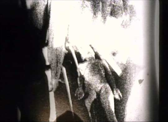Still image from the alledged Roswell alien footage from the end of the movie.
