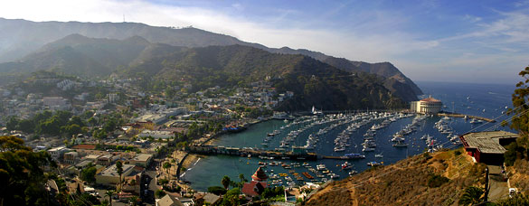 The witnesses' mother first noticed a 'huge lighted object' moving near their boat underwater. Pictured: Avalon Harbor, CA. (Credit: Wikimedia Commons)