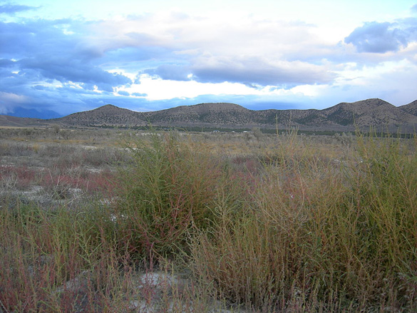 The object had about 10 lights in a triangular pattern and made no noise. Pictured: Eagle Mountain, UT. (Credit: Wikimedia Commons)