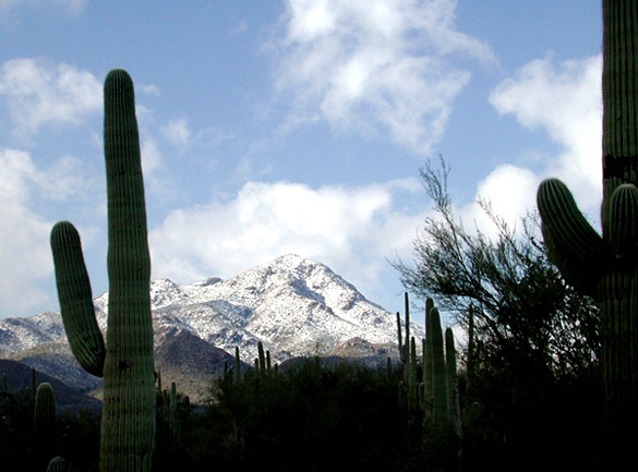 The objects appeared at the same time the Trident missile was launched, but the UFOs were seen in a different direction. Pictured: Snow on Wasson Peak near Tucson. (Credit: Wikimedia Commons)